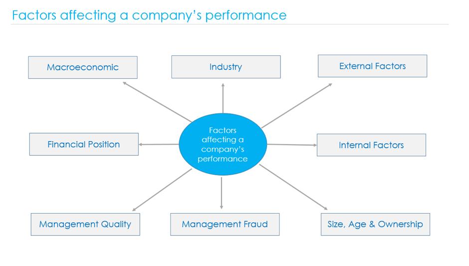 company-performance-factors